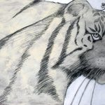 The Gentle Tigress